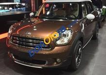 Mini Cooper Chính Hãng cần bán Mini Cooper Countryman sản xuất 2017, màu nâu, nhập khẩu nguyên chiếc