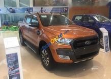 Bán Ford Ranger Wildtrak 2.2 đời 2017, 880 triệu