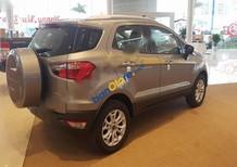 Cần bán Ford EcoSport Titanium 1.5AT sản xuất năm 2017, màu xám