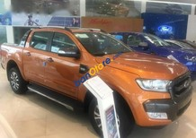 Bán Ford Ranger Wildtrak 3.2 4X4L năm 2017, xe mới, giá tốt