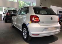 Cần bán xe Volkswagen Polo đời 2017, màu trắng, nhập khẩu, hỗ trợ vay tối đa. Lh: 0931416628