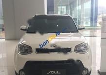 Kia Bình Định bán xe Kia Soul 2.0 2014, màu trắng, nhập khẩu, giá tốt