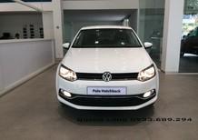 Hatchback phân khúc B - Volkswagen Polo AT 2016 nhập khẩu mới 100% - Quang Long 0933689294
