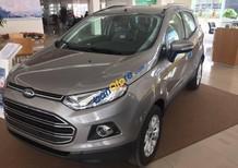 Bán xe Ford EcoSport Titanium 1.5P AT đời 2017, màu xám (ghi)