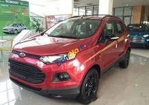 Bán xe Ford EcoSport Titanium năm 2017, mới 100%