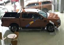 Cần bán xe Ford Ranger WildTrak 3.2L 4x4AT đời 2017, xe nhập