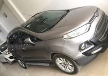 Bán Ford EcoSport sản xuất 2015, màu xám, như mới