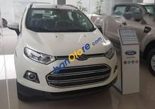 Bán Ford EcoSport đời 2017, màu trắng