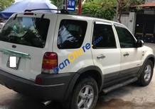 Bán xe Ford Escape AT đời 2001, màu trắng