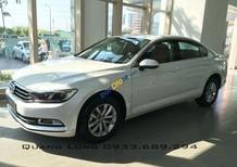 Volkswagen Passat E màu trắng duy nhất - nhập khẩu từ Đức - Quang Long 0933689294