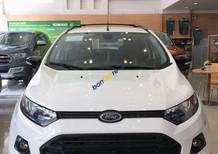 Cần bán xe Ford EcoSport Titanium 1.5P AT sản xuất năm 2017, màu trắng