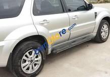 Cần bán gấp Ford Escape XLT đời 2009, màu bạc số tự động