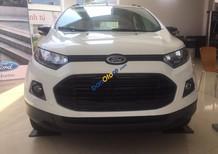 Bán Ford EcoSport giá rẻ xe gầm cao, hỗ trợ trả góp lên đến 80%