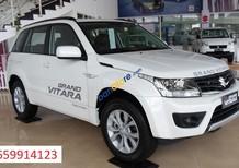 Cần bán Suzuki Grand vitara sản xuất năm 2017, màu trắng, nhập khẩu