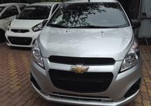 Bán Chevrolet Spark van 2013 màu bạc nhập khẩu