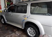 Cần bán xe Ford Everest đời 2010, màu bạc
