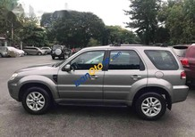 Cần bán Ford Escape đời 2010, đăng ký tháng 2010