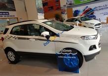 Bán Ford EcoSport Titanium 1.5L AT năm sản xuất 2017, màu trắng, 579tr