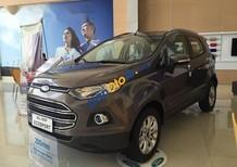 Bán Ford EcoSport đời 2017, màu nâu, giá tốt