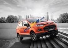 Bán Ford EcoSport sản xuất 2016, xe mới, giá tốt