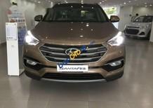 Bán Hyundai Santa Fe đời 2017, màu nâu, trang bị tiện nghi đẳng cấp