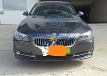 Bán BMW 5 Series 520i 2015, màu xanh lam, nhập khẩu nguyên chiếc