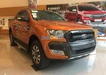 Bán Ford Ranger Wildtrak 3.2 AT đời 2017, xe nhập, giá 890tr