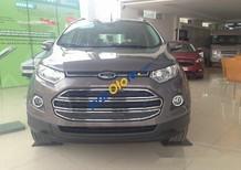 Bán xe Ford EcoSport Titanium AT đời 2017, màu xám
