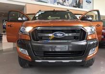 Cần bán xe Ford Ranger năm sản xuất 2017, xe nhập, giá tốt