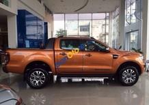 Cần bán Ford Ranger Wildtrak đời 2017, giá chỉ 790 triệu