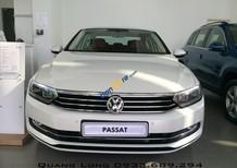 Chỉ với 265 triệu trả trước có ngay Volkswagen Passat màu trắng ngọc trai đặc biệt - Nhập khẩu chính hãng