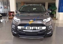 Bán xe Ford EcoSport 2017, full options + BHVC, 0932.628.750