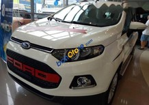 Bán xe Ford EcoSport 2016, trắng