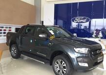 Ford Hà Giang bán xe Ford Ranger Wildtrak 2 cầu số tự động trả góp tại Hà Giang thủ tục nhanh gọn, LH: 0902212698