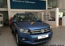 Tiguan SUV cỡ trung cho đô thị năng động xe Đức nhập khẩu - LH hotline 0933689294
