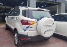 Bán xe Ford EcoSport đời 2017, màu trắng