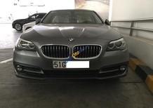 Bán 2016 BMW 520i, màu xám bạc, nhập khẩu nguyên chiếc chính hãng