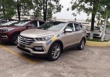 Cần bán xe Hyundai Santa Fe đời 2018 - đầy đủ khuyến mại, xe giao ngay, liên hệ Thành Trung: 0941.367.999