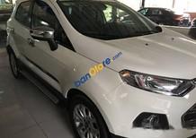 Bán ô tô Ford EcoSport năm sản xuất 2014, màu trắng