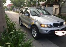 Bán BMW X5 SI sản xuất năm 2005, màu bạc, nhập khẩu