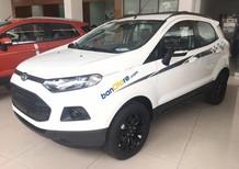Bán ô tô Ford EcoSport Titanium Black 1.5L AT năm sản xuất 2016, màu trắng