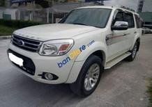 Cần bán lại xe Ford Everest AT năm sản xuất 2013, màu trắng số tự động