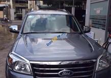 Bán Ford Everest sản xuất 2010, màu xám, nhập khẩu