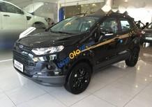 Cần bán Ford EcoSport đời 2017, màu đen