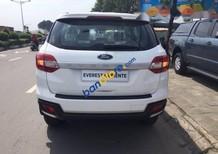 Bán ô tô Ford Everest đời 2017, màu trắng