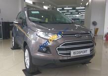 Bán ô tô Ford EcoSport 1.5P Trend MT sản xuất năm 2017, màu xám