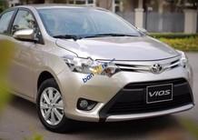 Cần bán Toyota Vios 1.5G đời 2017, tặng bảo hiểm thân vỏ