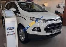 Bán Ford EcoSport Titanium năm sản xuất 2017, màu trắng, giá tốt