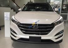 Bán ô tô Hyundai Tucson 2.0 ATH năm 2017, màu trắng, giá 860tr