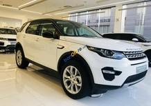 Land Rover Discovery Sport SE 2017 - xe 07 chỗ, nhập Anh Quốc, giá từ 2 tỷ 700 triệu